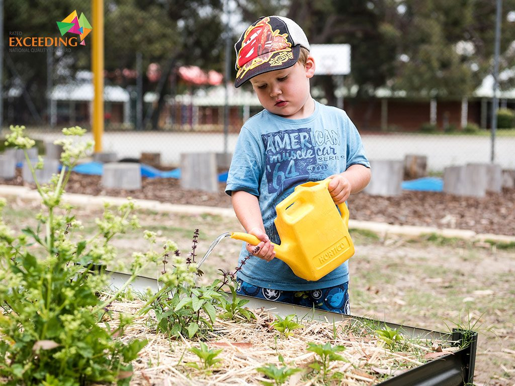 our high wycombe early learning program offers quality sustainability practices and teaches children responsibility in the pre-kindy class. A wonderful alternative to childcare - the award winning high wycombe team are unbeatable!