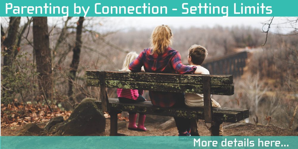 parenting by connection is a free course provided by the south west metropolitan parenting service