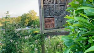Native Bee Workshop Woodvale
